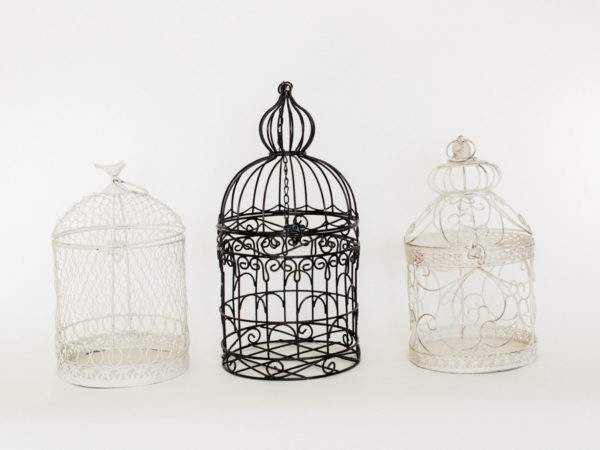 Bird Cages