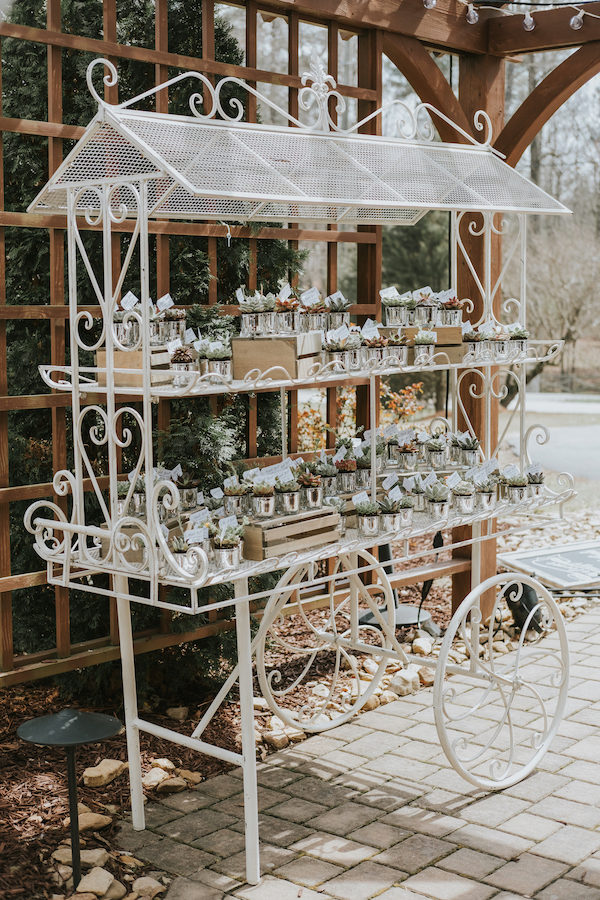 ashton trolley cart