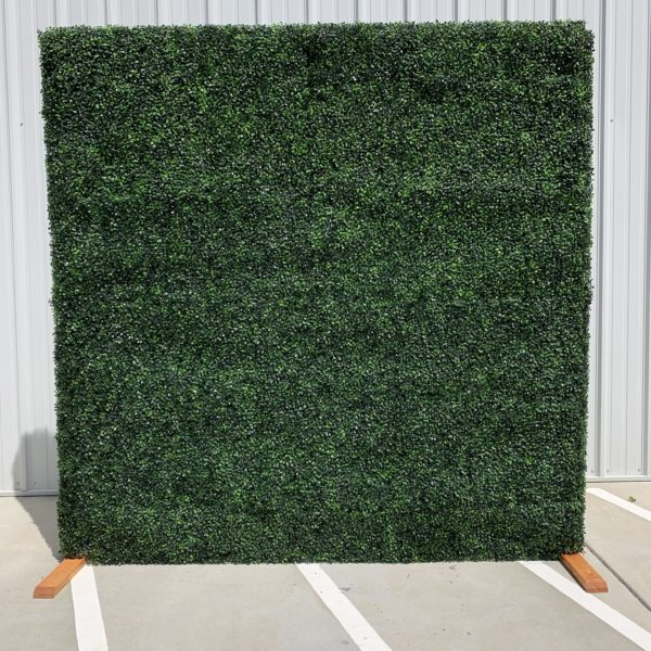 boxwood wall